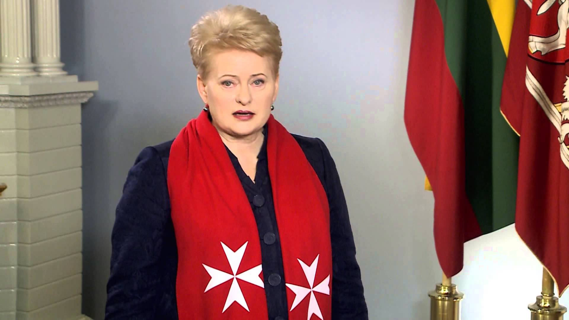 President of Lithuania: biography and career of Dali Grybauskaite 31