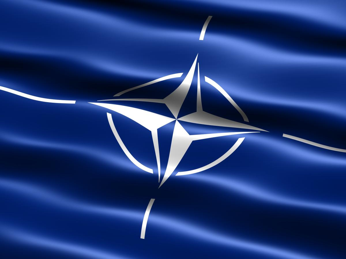The First NATO: British and French Joint Aggressions in the Mid-19th Century