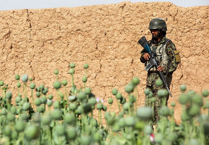 Why would US Transform Afghanistan into a Drug Empire?