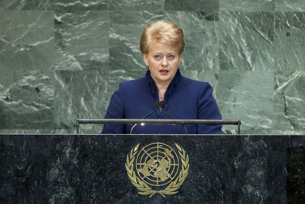 Lithuania's alleged involvement in Maidan contradicts supposed European values